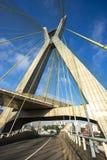 modern arkitektur bridges modernt Kabel-bliven bro i världen, Sao Paulo Brazil royaltyfria foton