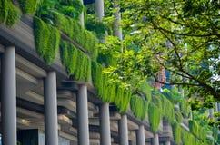 Modern arkitektur och vertikala trädgårdar av Singapore Arkivbild