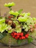 Modern autumnal flower arrangement Royalty Free Stock Photos