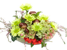 Modern autumnal flower arrangement on white Royalty Free Stock Image