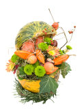 Modern autumnal flower arrangement on white Stock Photography