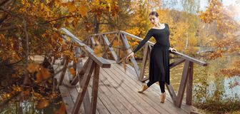 Modern ballet dancer in the autumn park. Modern ballet dancer on the wooden bridge in the autumn park. Freedom, harmony and unity with nature royalty free stock photos
