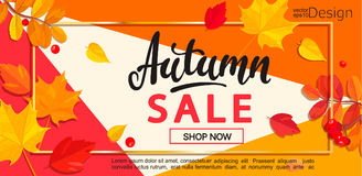 Modern banner for autumn sale. Stock Image
