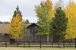 Modern Barn With Autumn Foliage Stock Image