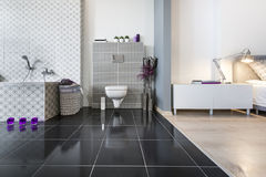 Modern Bathroom And Bedroom Wide View Stock Photography