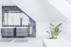 Modern bathroom design Royalty Free Stock Image