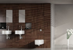 Modern bathroom with double basin Royalty Free Stock Image