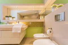 Modern bathroom with green painted wall Royalty Free Stock Photos