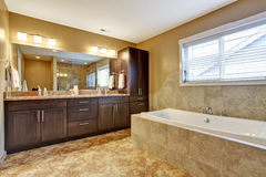 Modern bathroom interior with dark brown cabinets Stock Image