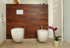 Modern bathroom with toilet and bidet Royalty Free Stock Images