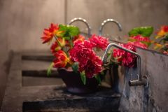 Modern Bathroom or toilet counter with flowers. Modern Bathroom or toilet counter With faucet, Vase and artificial Flowers royalty free stock images