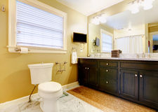 Modern bathroom with tv Stock Image