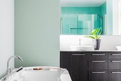 Modern Bathroom using soft Green Pastel Colors Stock Images