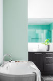 Modern Bathroom using soft Green Pastel Colors Royalty Free Stock Photo