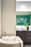 Modern Bathroom using soft Green Pastel Colors Royalty Free Stock Image