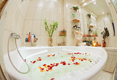 Modern bathroom in warm tones. With jacuzzi and rose petals wide angle view Royalty Free Stock Photos