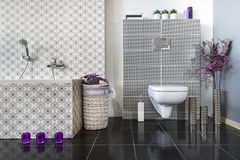Modern bathroom with WC. In black and white Stock Image