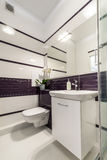 Modern bathroom in white and violet style Stock Photo