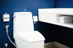 Modern bathrooms with flushing and decorating ideas. Interior at home concept stock images