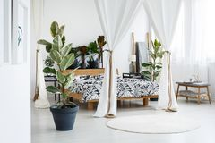 Modern bedroom with canopied bed. Plant and grey bench next to a wooden, canopied bed in modern bedroom interior with lamp Royalty Free Stock Photos