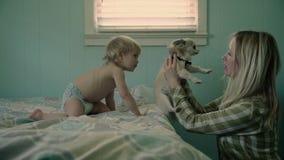 Modern behandla som ett barn pojken och hunden arkivfilmer