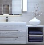 Modern binnenlands ontwerp van badkamers Stock Afbeeldingen