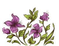 Modern bloemenontwerp Royalty-vrije Stock Afbeeldingen