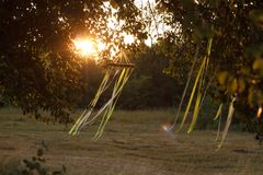 Modern bohemian decoration of white macrame and ribbons, hanging on branches in summer park. A modern bohemian decoration of white macrame and ribbons, hanging stock photo