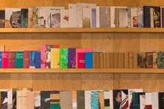 Modern bokhylla Royaltyfri Foto