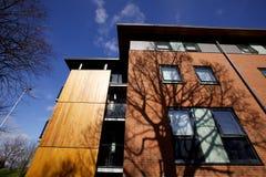 Modern bostads- hyreshus i solljus med skugga av det stora trädet royaltyfria foton