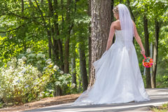 Modern Bride Outdoors Stock Image
