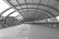 modern bro Arkivbild