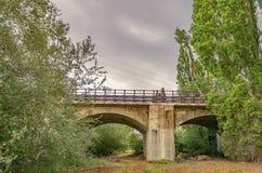 Modern bro i mitt av den gröna vårskogen per grå eftermiddag av dyster himmel royaltyfri foto