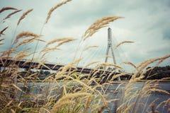 Modern bro i Warszawa över Vistula River, Polen Royaltyfria Bilder