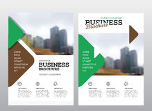 Modern Brochure design template. Annual report layout with photo place. illustration vector in A4 size Royalty Free Stock Photo