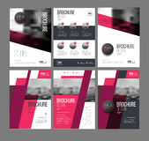 Modern Brochure design template. Vector set. 6 Annual report layout with photo place. illustration vector in A4 size Stock Images