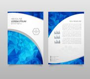 Modern Brochure layout, flyer and cover design template with polygonal paper plane graphics. Modern triangle presentation template vector illustration