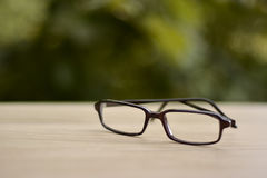 Brown modern glasses frame with blurry tree background. Fashion brown frame for eyeglasses Stock Photos