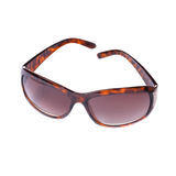 Modern brown sunglasses Stock Photography