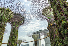 Modern buidings. Modern buildings in the park;Gardens by the bay; of Singapore Stock Photo