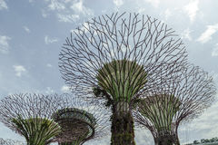 Modern buidings. Modern buildings in the park ;Gardens by the bay; of Singapore Stock Photo