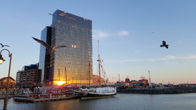 Modern Building at Baltimore inner Harbor. At sunset with reflection of sun light Royalty Free Stock Photography