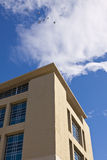 Modern Building with Birds. Modern Building over blue sky with Birds Royalty Free Stock Images