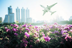 Modern building with flower and airplane under the sky in Bangko Stock Images
