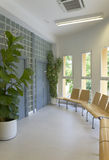 Modern building interior with plants and windows Royalty Free Stock Photo