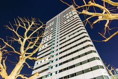 Modern building with Leafless trees that look from below at night in Sapporo, Hokkaido, Japan.  Royalty Free Stock Image