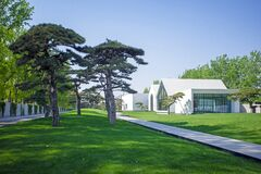 Modern  building with meadow and pine tree