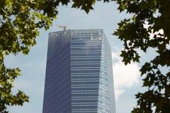 Modern building metallic and glass facade detail with tree limb Stock Photos