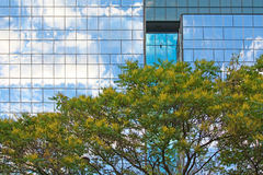 Modern building and tree Stock Photography