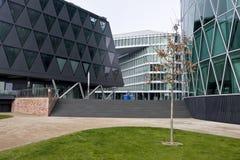 Modern buildings. Buildings near the river Main in Frankfurt, Germany Royalty Free Stock Photo
